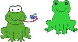 İkizler ile İki Kurbağa / Yücel FEYZİOĞLU